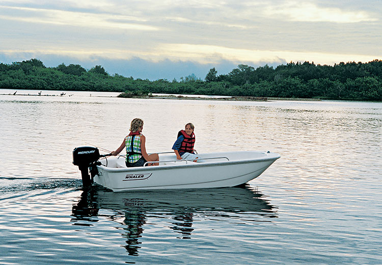 Boston-Whaler-110-Tender-Gallery-2