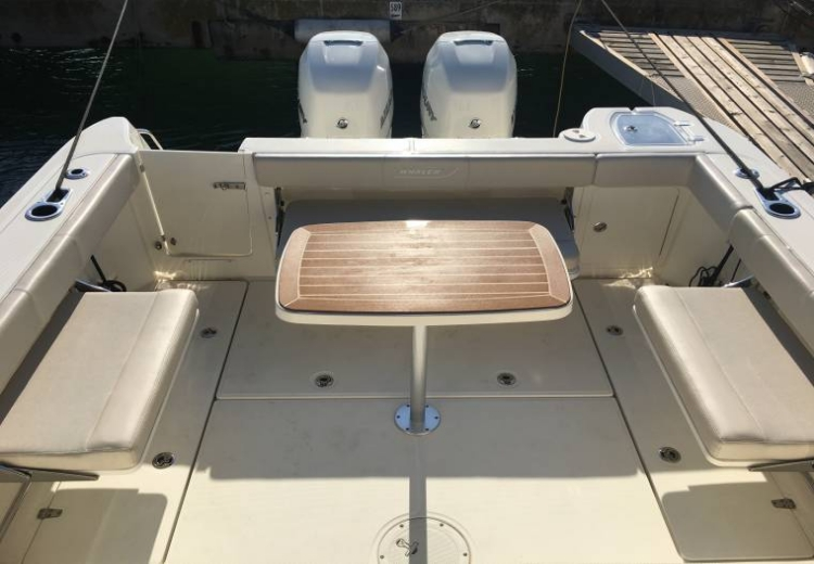 boston-whaler-315-conquest-50011100171850705353515050684569x