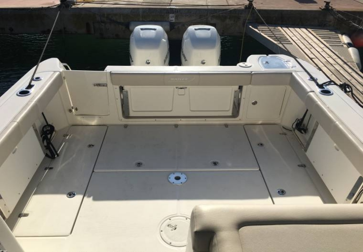 boston-whaler-315-conquest-50117100171850705354684865684557x